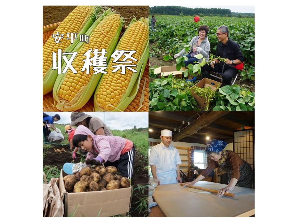 安平町 収穫祭…