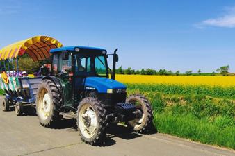 『菜の花畑ドライブ』ご乗車予約…